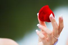 Сердце в руке Стоковые Изображения RF