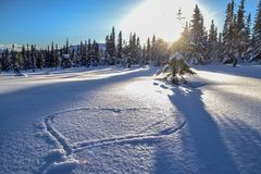 Сердце в снежке Стоковое фото RF