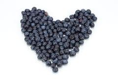 сердце голубики Стоковые Фотографии RF
