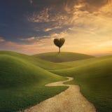Сердце дерева на холме Стоковые Фотографии RF