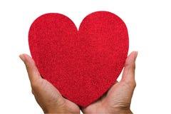 сердце держа вашим Стоковые Фотографии RF