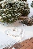 Сердце и bush снежка Стоковая Фотография