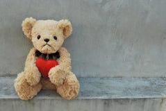 Сердце красного цвета владением медведя Стоковое фото RF