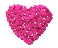 Сердце лепестка Rose Стоковая Фотография