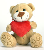 сердце медведя стоковые изображения