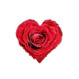 сердце подняло стоковые изображения rf