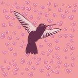 сердце птицы Стоковое фото RF