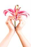 сердце руки любит форменной Стоковые Фото