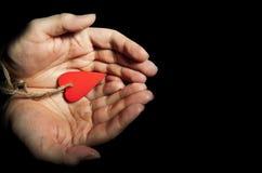 сердце руки Стоковая Фотография