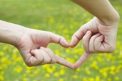 сердце руки Стоковые Фото