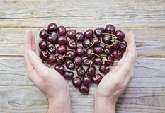 Сердце свежих и зрелых вишен в приданных форму чашки мужских руках Стоковое фото RF