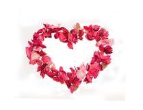 сердце сделало розы лепестков Стоковая Фотография RF