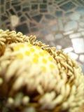 Сердце цветка лотоса стоковая фотография