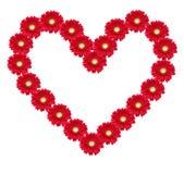 сердце цветка Стоковые Фото