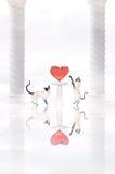 сердце 2 котов Стоковое Изображение