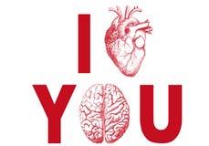 сердце i вы Стоковая Фотография