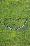 сердце paris Стоковая Фотография RF
