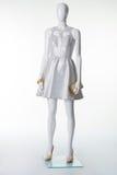 Серебристое платье на манекене Стоковые Фотографии RF
