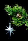 серебряная звезда Стоковые Фотографии RF