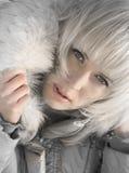 серебряная зима Стоковое Изображение RF