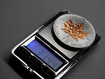 Серебряная монетка кленового листа Стоковые Фотографии RF