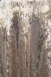 Серебряная сияющая текстура стоковое фото