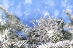 Серебряная снежинка в ветвях сосны Стоковое Изображение