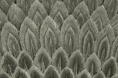 Серебряная текстура штукатурки пера Стоковое фото RF