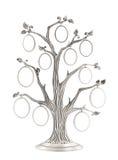 Серебряное родословное фамильное дерев дерево Стоковые Фотографии RF