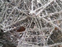 Серебряное украшение рождественской елки Стоковое Фото