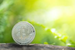 Серебряное bitcoin на предпосылке растительности стоковое изображение