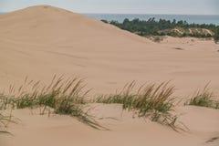Серебряные песчанные дюны озера и Lake Michigan стоковое фото rf