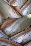 серебряные стержни Стоковое Изображение