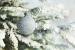 Серебряные шарики рождества вися на ветви ели Стоковое фото RF