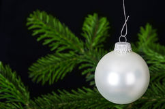 Серебряный белый орнамент рождества безделушки над ветвью ели Стоковое фото RF