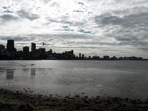 Серебряный горизонт города стоковая фотография