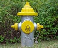 Серебряный и желтый жидкостный огнетушитель Стоковое Фото