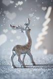 Серебряный северный олень Стоковые Фотографии RF