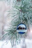 Серебряный шарик весит на ветви сосны Стоковые Изображения RF