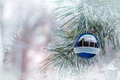Серебряный шарик весит на ветви сосны Стоковое Фото