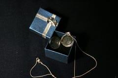 Серебряный шкентель в коробке стоковое изображение rf