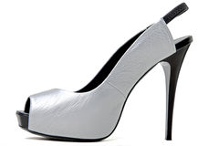 серебр ботинка Стоковое фото RF