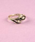 серебр кольца Стоковые Фото