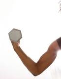 серебр скручиваемости Стоковые Фотографии RF