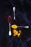 серебр spices ложки Стоковые Фотографии RF