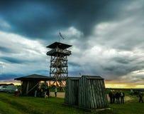 Середина лета в Эстонии Стоковые Фотографии RF