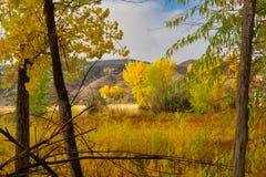 Середина утра в октябре стоковые фотографии rf