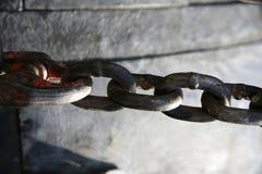 Сережки цепи металла как промышленная предпосылка стоковая фотография rf