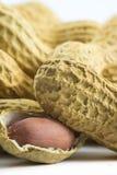 Серии арахисов - треснутой гайки - близкий поднимающий вверх взгляд Стоковые Фото