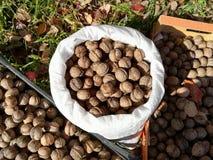 Серии грецких орехов в сумке стоковые изображения rf
